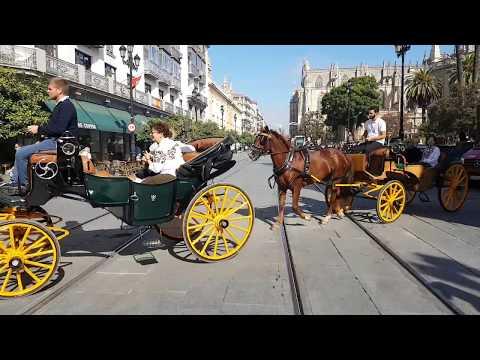 Impressionen zum Reisebericht Sevilla - Rundreise Andalusien
