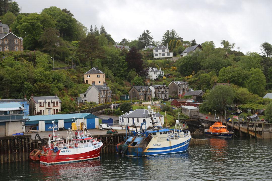 Sicht Hafen Oban nach Isle of Mull
