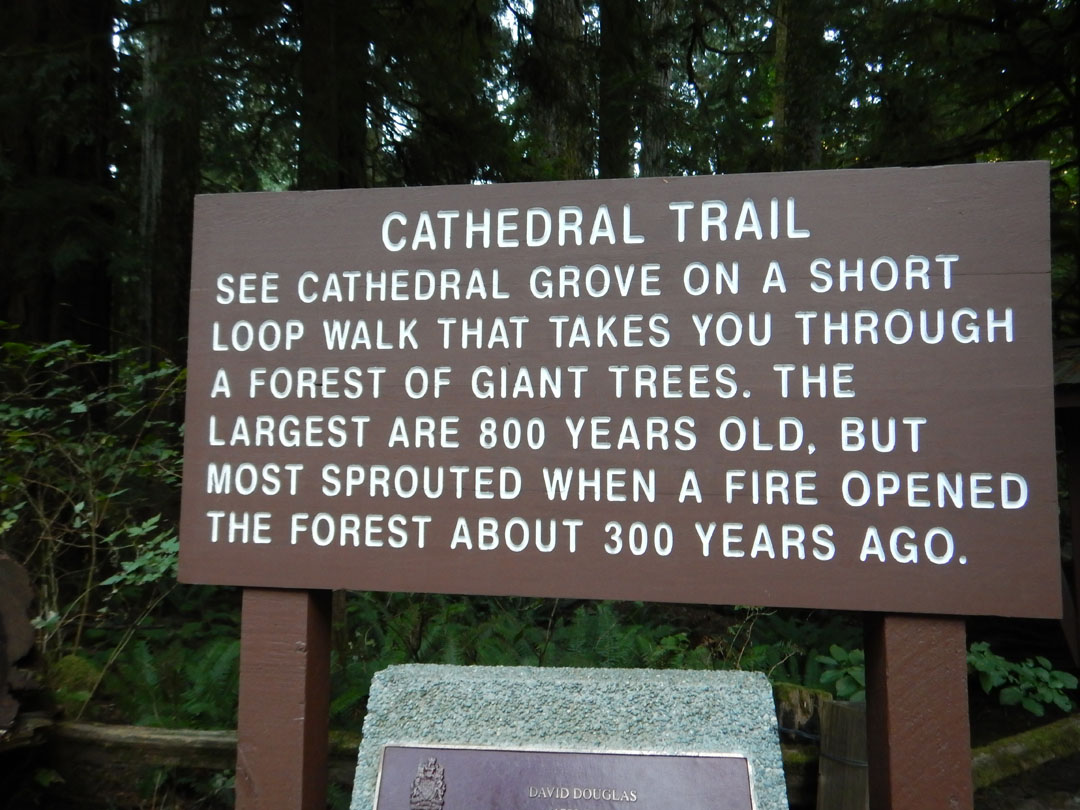 Cathedrial Trail, Vancouver Island, Kanada