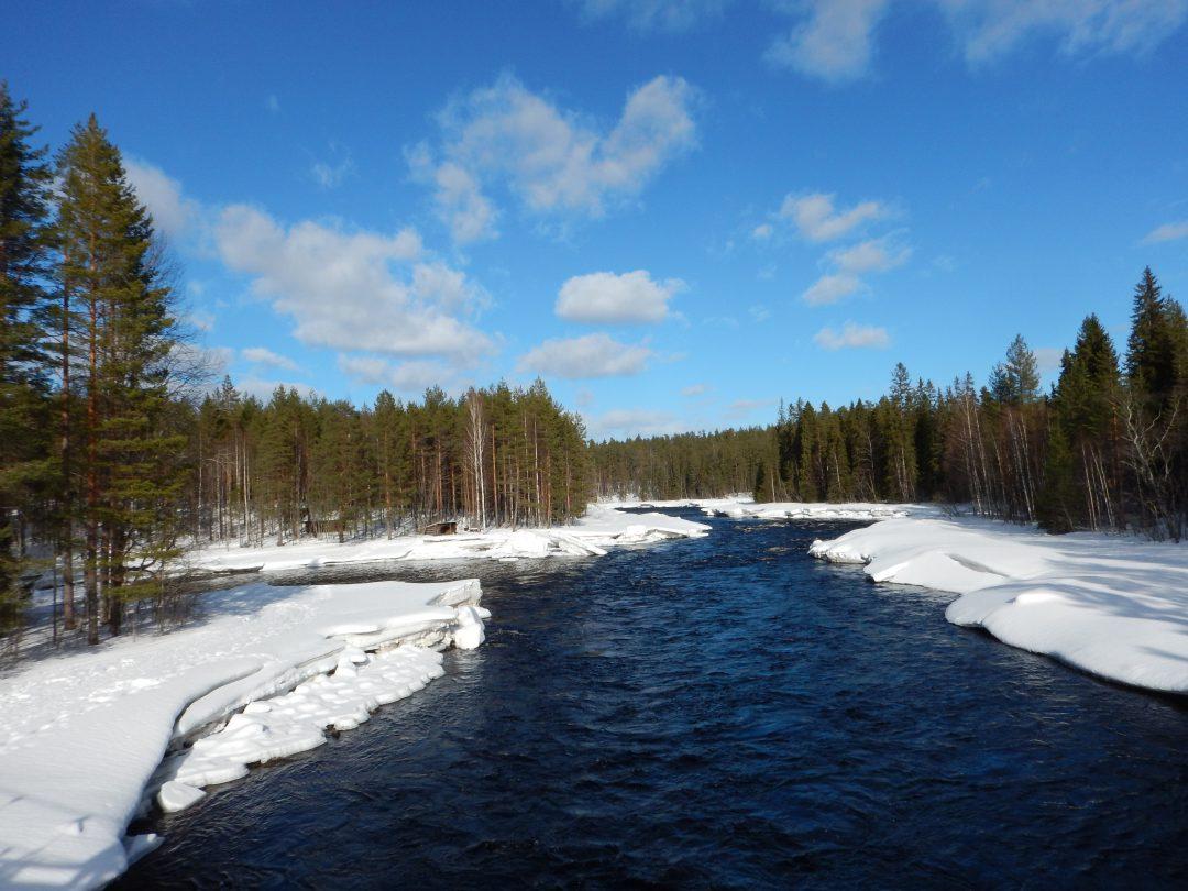 Motorschlitten Tour Finnland
