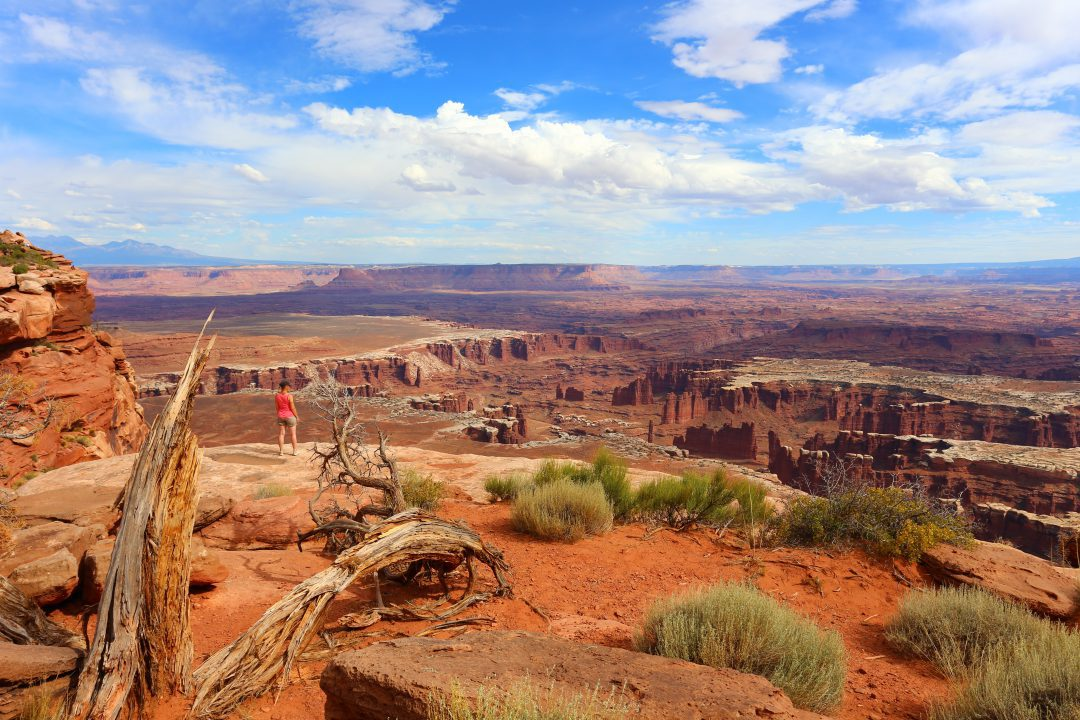 Grand View Point Overlook Canyonlands National Park Utha