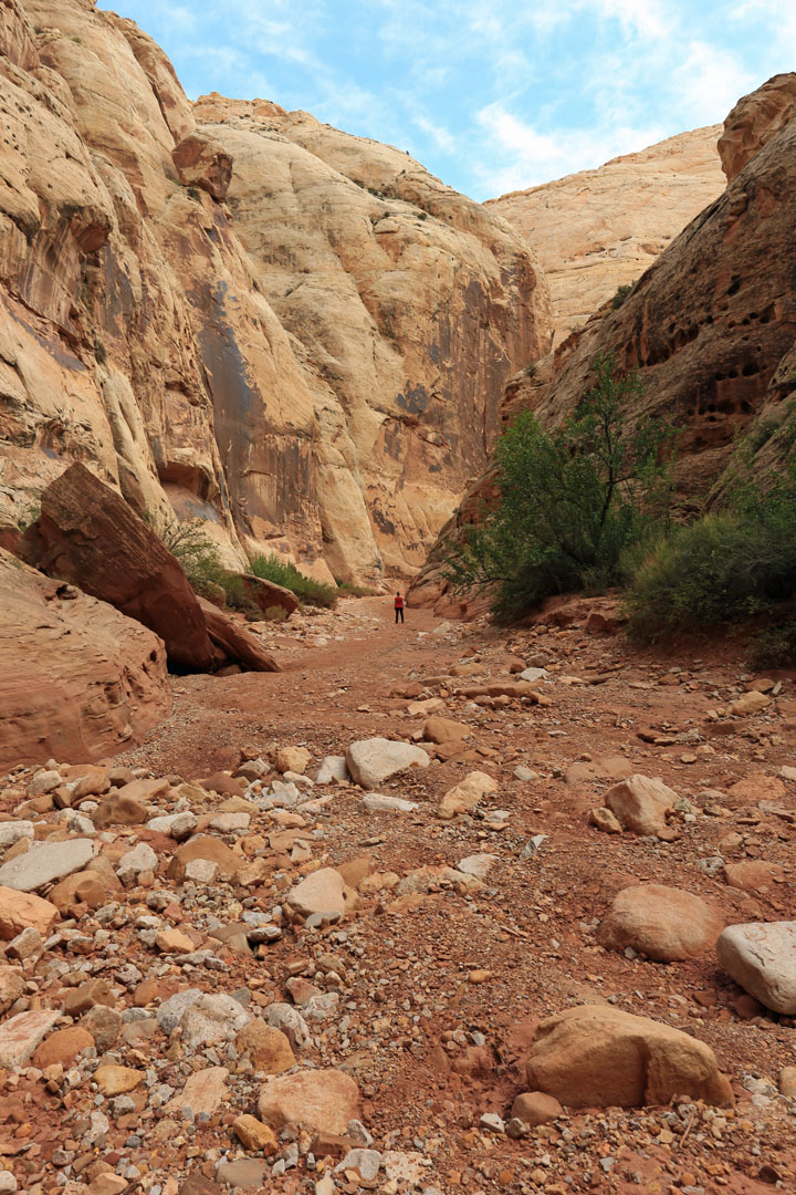 Grand Wash Trail Capitol Reef Nationalpark Utha USA
