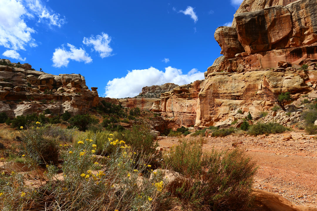 Grand Wash Trail Capital Reef Nationalpark Utha USA