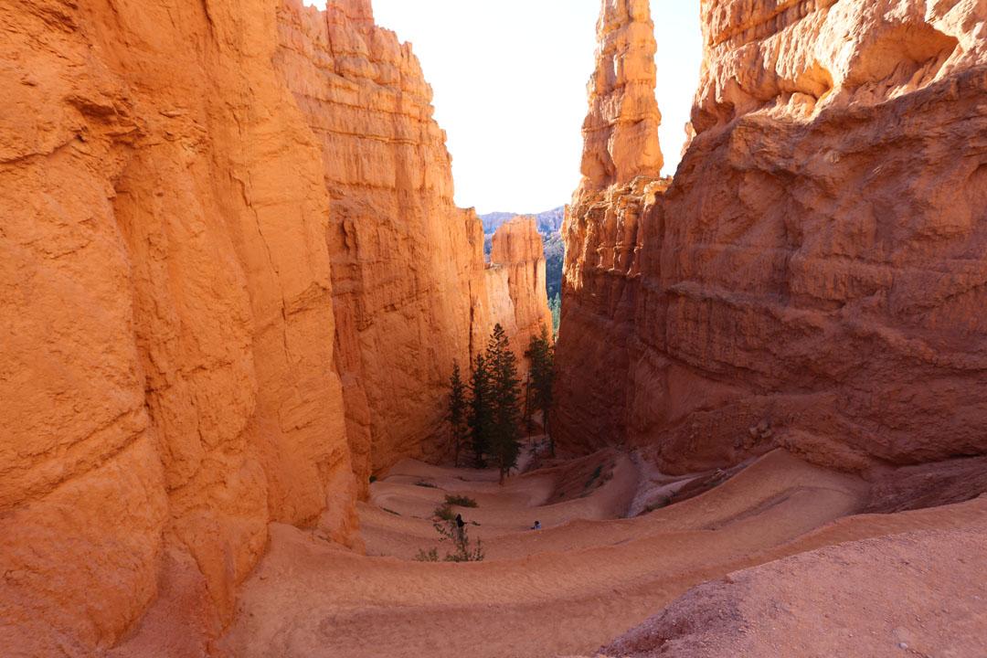 Bryce Canyon Navajo Trail Utha USA