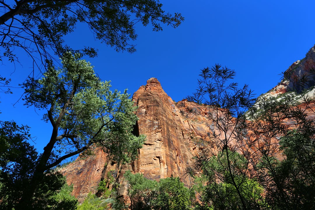 Temple of Sinawava Zion National Park Utha USA