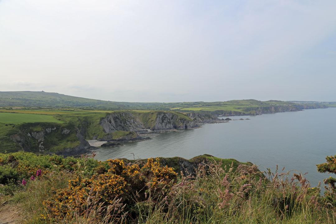 Coast Path Newport Wales