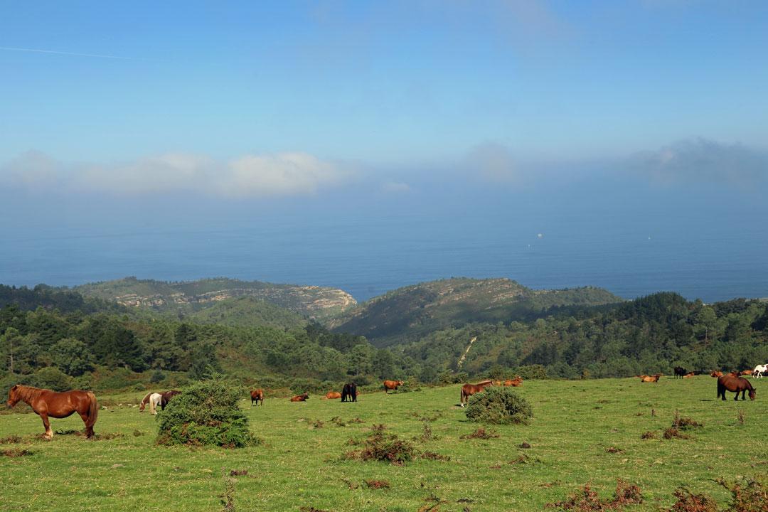 Küstenstrasse Hondarriba nach San Sebastian Baksenland Spanien