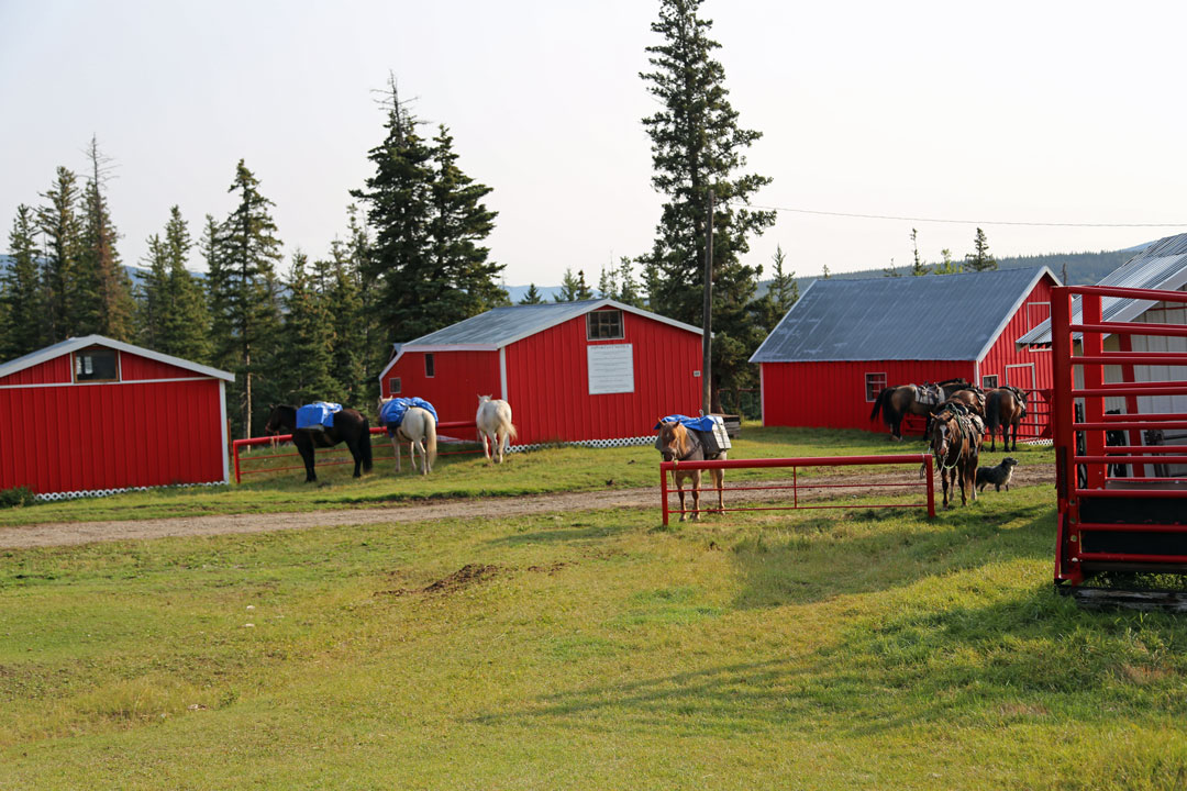 Ranch Stallungen Reiten Rocky Mountains Kanada