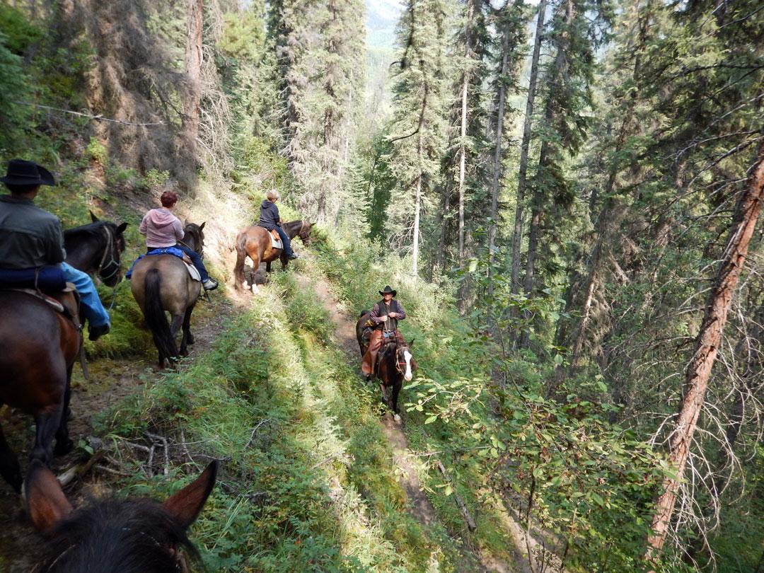 Hinweg Reiten Rocky Mountains Kanada