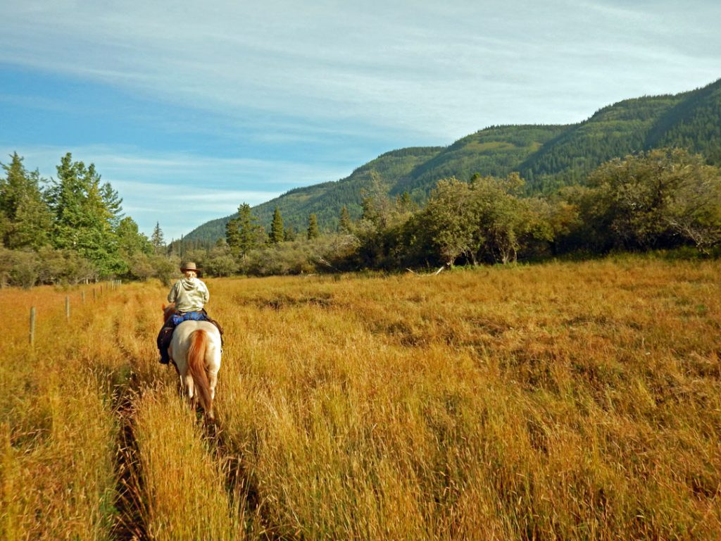 Reiten Rocky Mountains Kanada