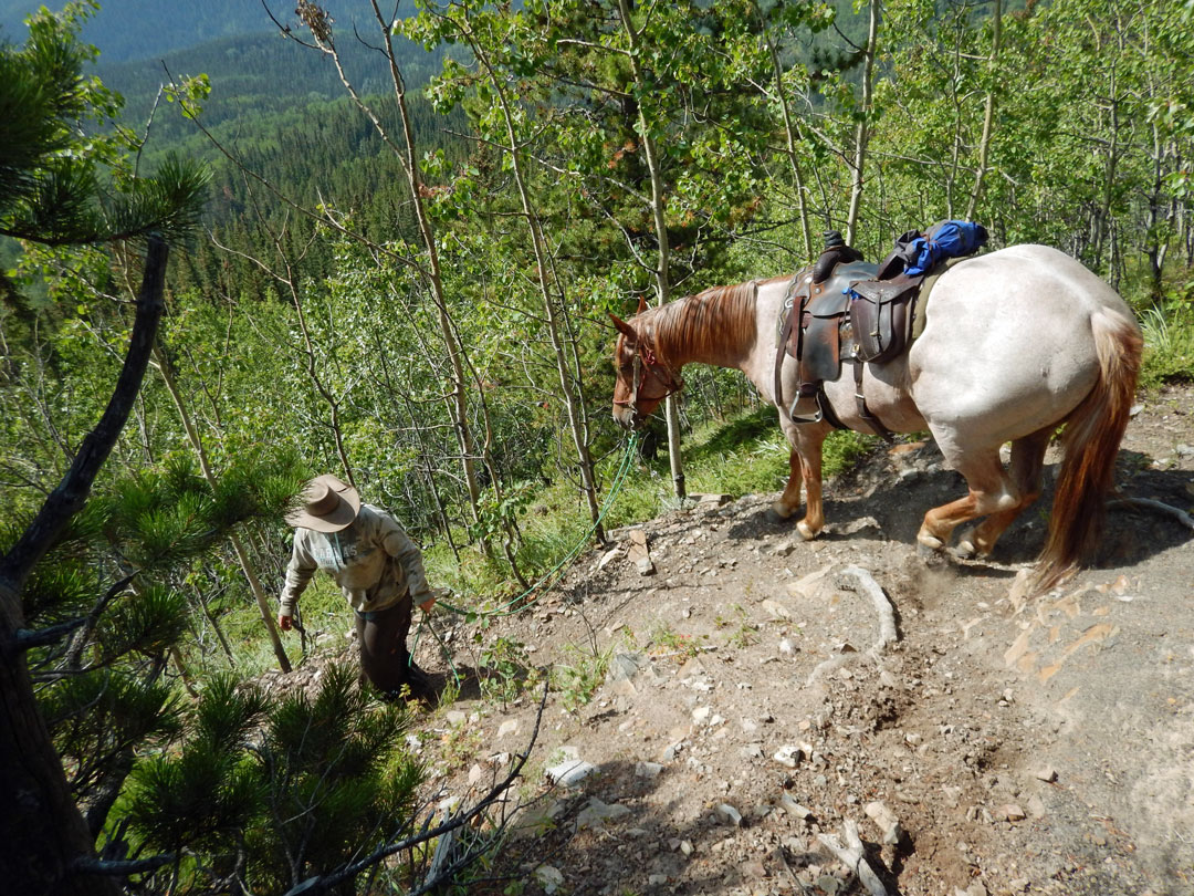 Abstieg Paradise Ridge Reiten Rocky Mountains Kanada