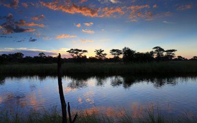 Durch die Zambesi (Caprivi) Region – N'Kwazi Lodge – Kwando Camp