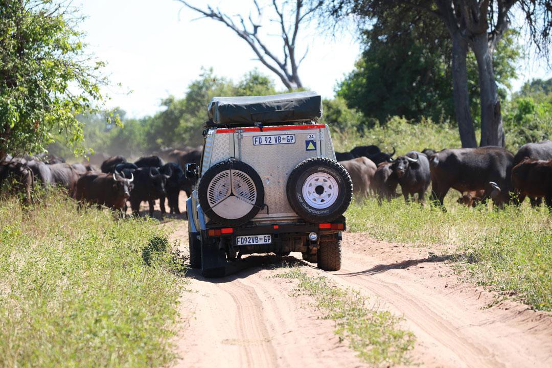 Chobe Nationalpark 4x4 Strecke Botswana