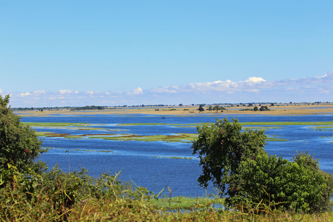 Chobe River Flusslandschaft Botswana