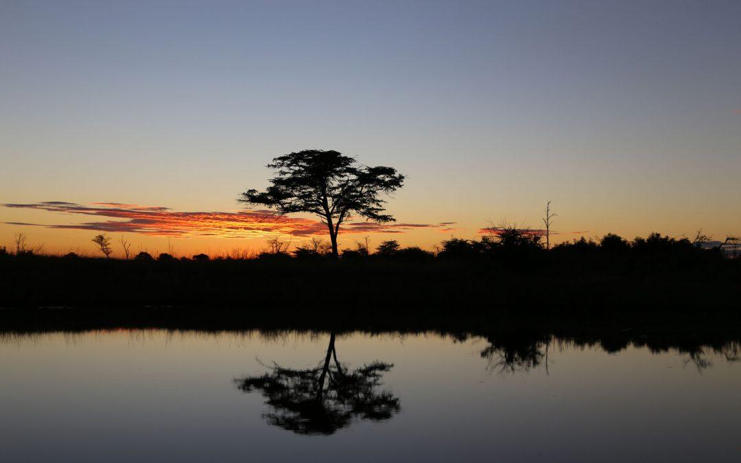 Mashi River Safaris – Tagestour auf dem Kwando River mit Übernachtung