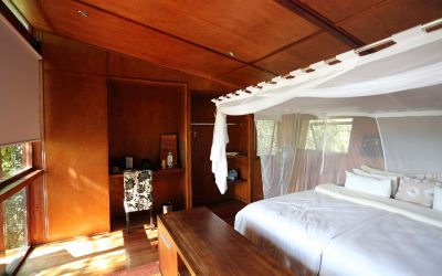 River Dance Lodge – Luxus am Okavango River