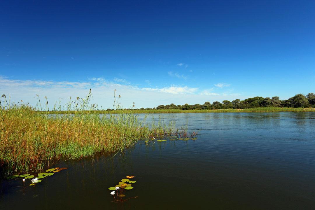 N'Kwazi Lodge Cubango River Namibia