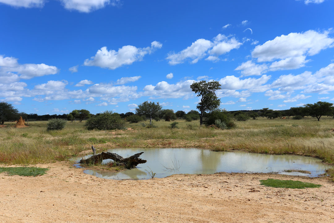 Okonjima Lodge Wasserloch Namibia