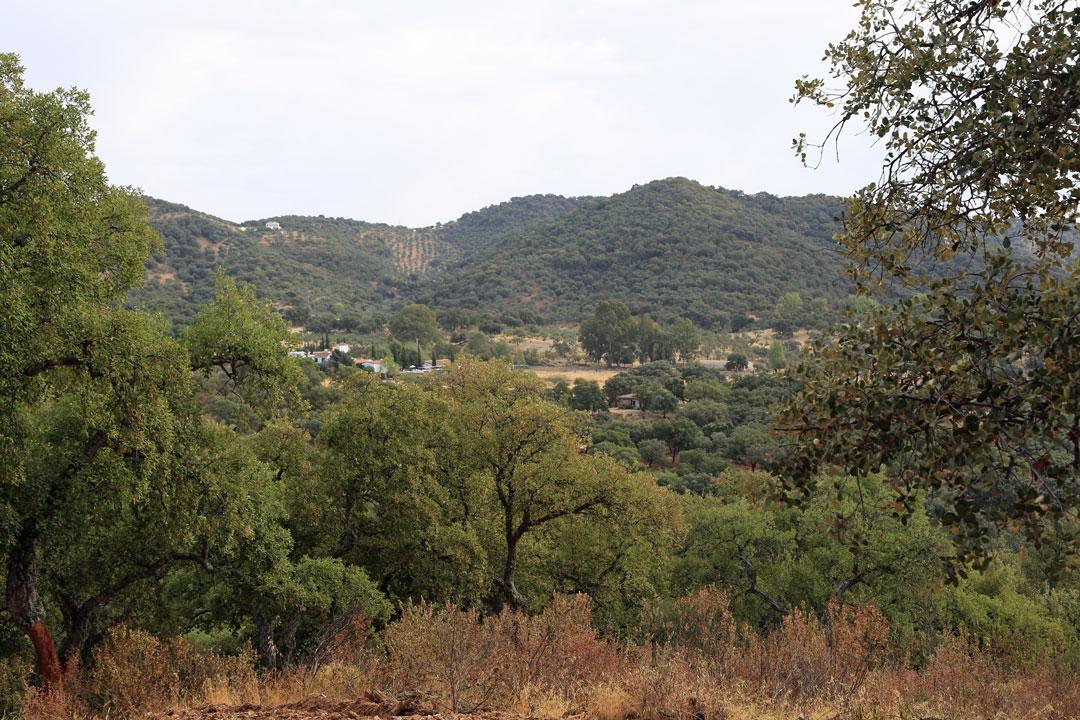 Cazalla del la Sierra Casa Rural las Navezuelas Andalusien Spanien