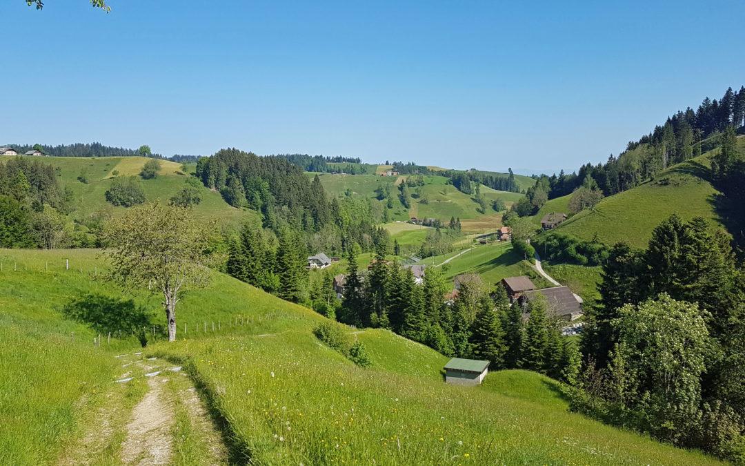 Tagesausflug Rundwanderung zum Berghotel Napf