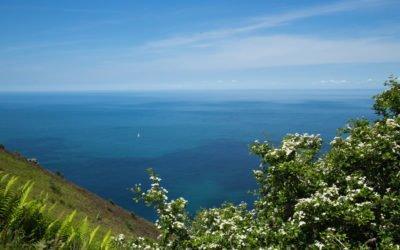 Exmoor Nationalpark - grüne Landschaften und herrliche Küsten