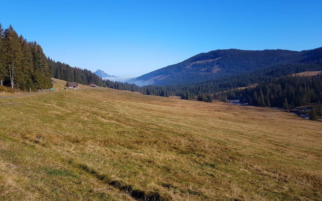 Langis Glaubenberg – Rundwanderung im Schlierental