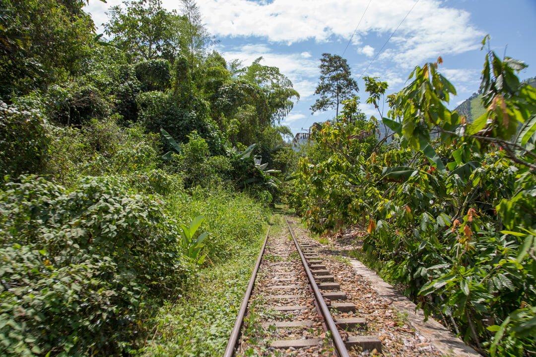 Geleise entlang des Rio Cauca