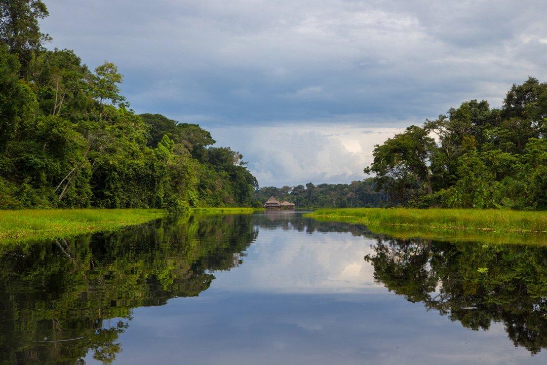 Naturreservat Marasha Amazonas Peru
