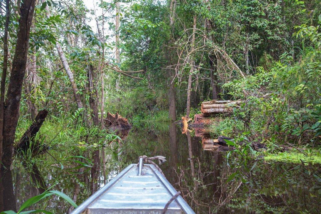 Rueckfahrt Marasha Naturreservat