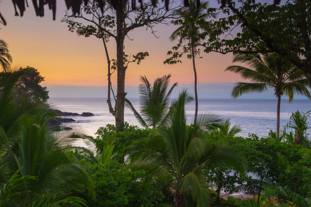 Copa de Arbol Beach and Rainforest Resort Osa Peninsula