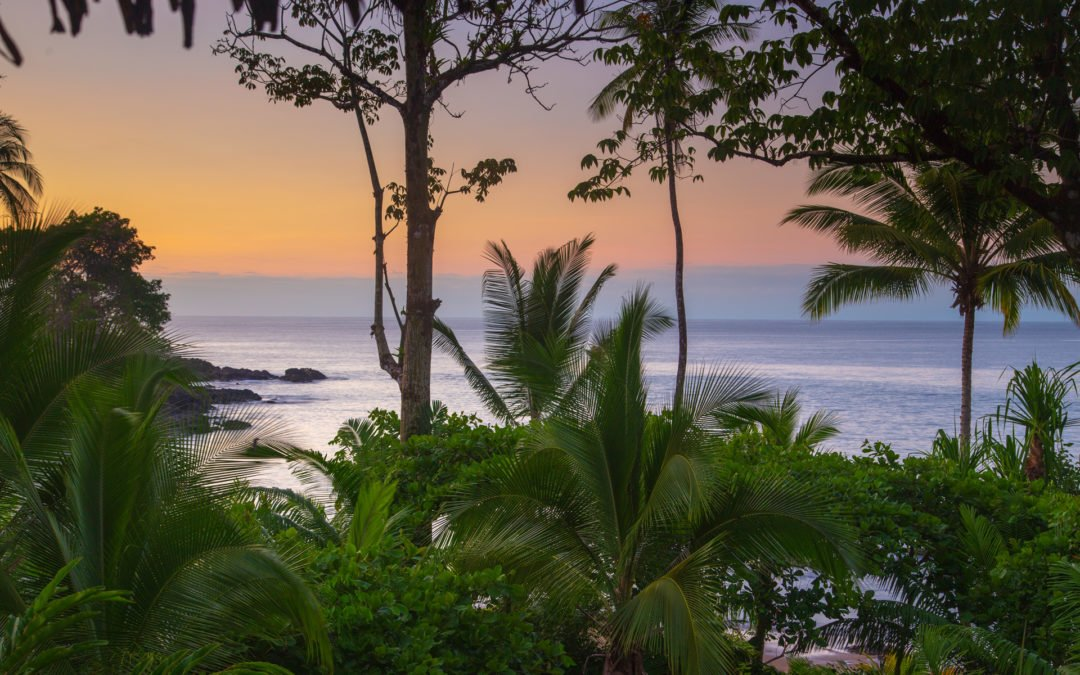 Paradiesisch - Drake Bay Lodge Copa de Arbol - Corcovado Nationalpark Osa Peninsula