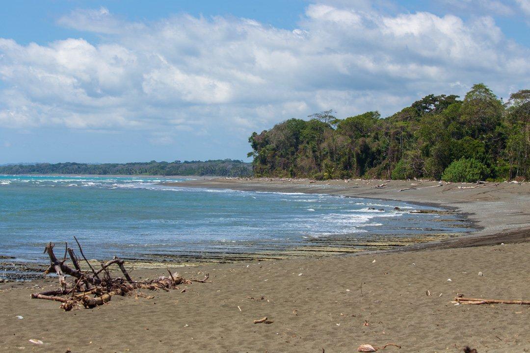 Corcovado Nationalpark Osa Peninsula Costa Rica