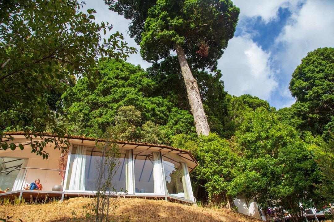 Dantica Cloud Forest Lodge Cabine 8 Costa Rica