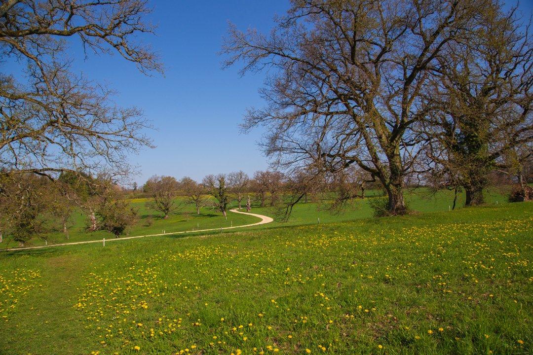Wanderung Bubenberg Schloss Wildenstein