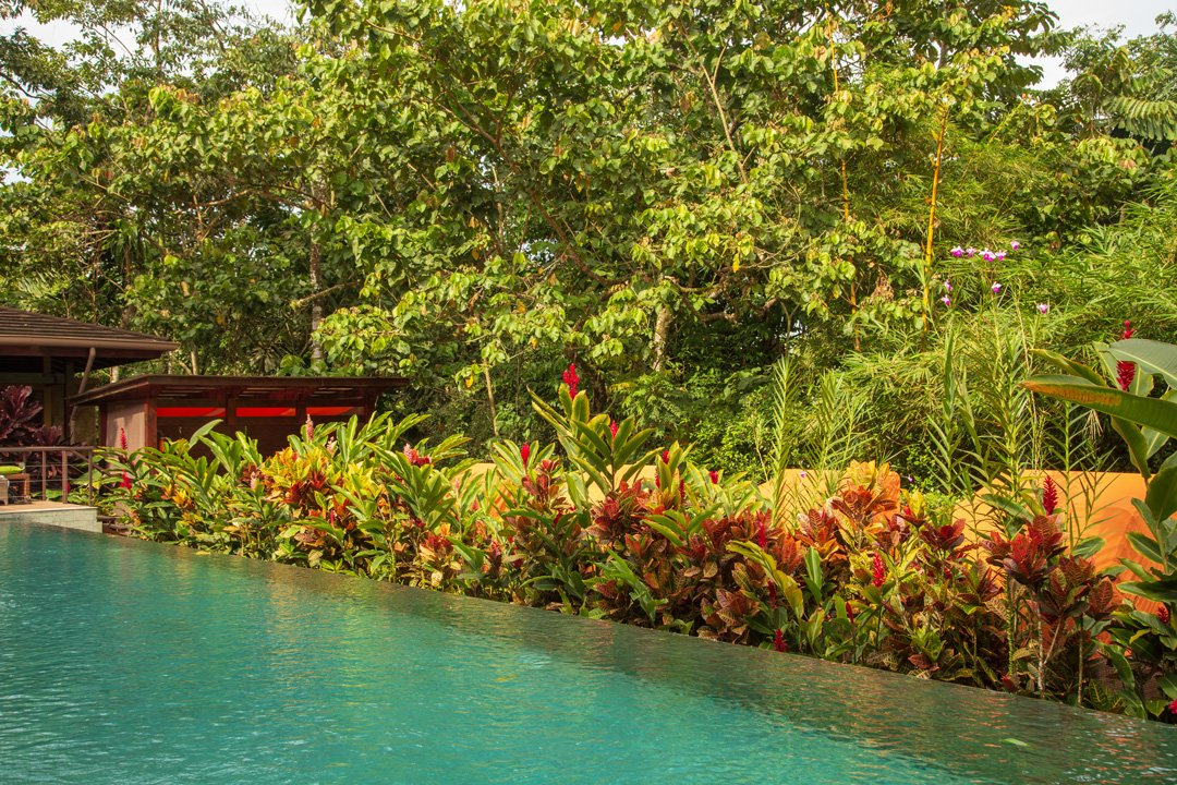 Nayara Resort Pool Fortuna Costa-Rica
