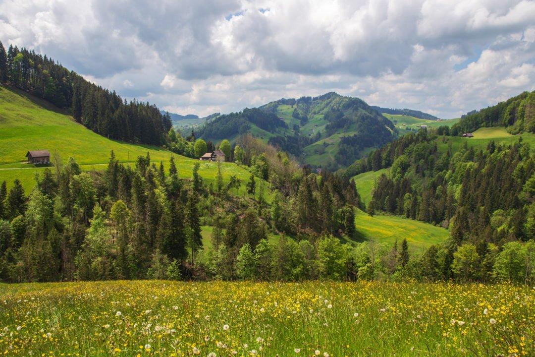 Rundwanderung Appenzell Hundwiler Höhi Züchersmühl