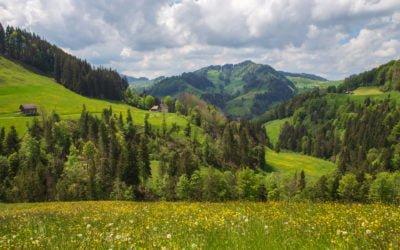 Rundwanderung Appenzell - Zürchersmühle - Hundwiler Höhe