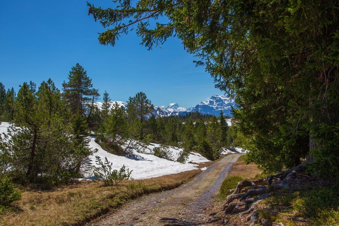 Wanderung Amden Arvenbüel Wanderweg Breit Riet