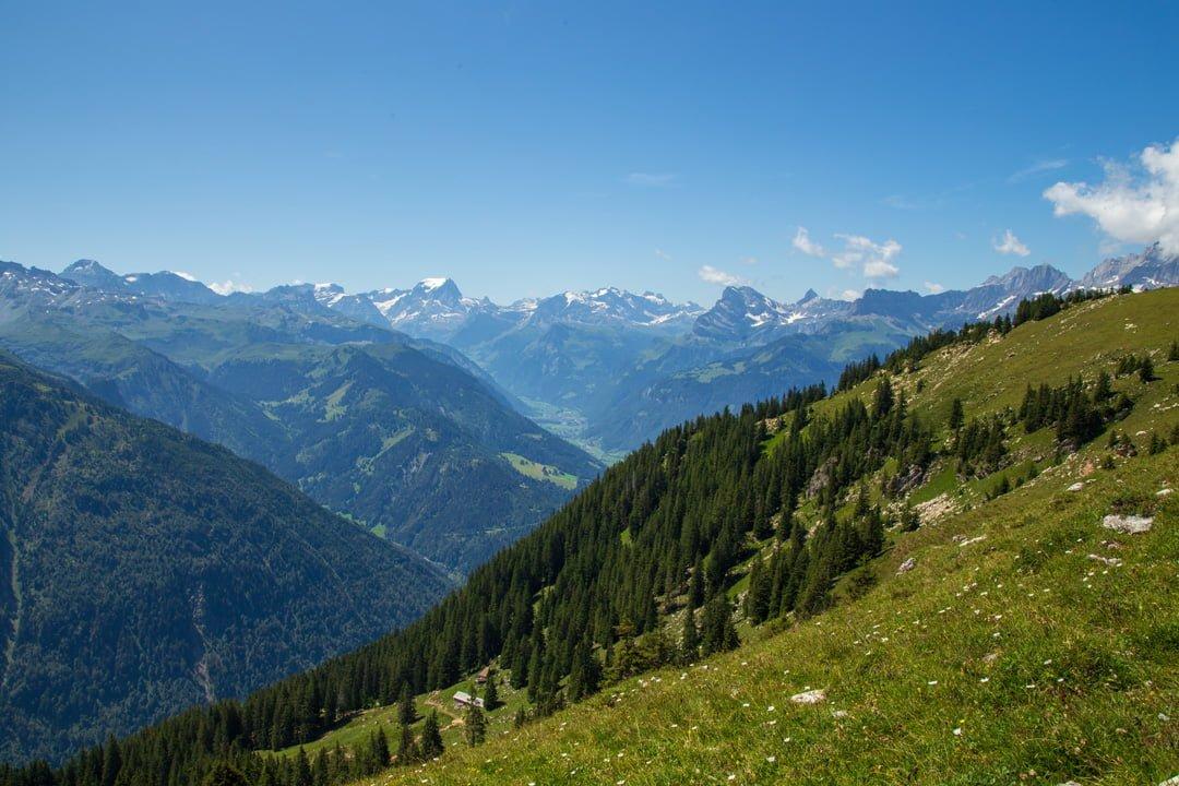 Rundwanderung Ennenda Alp Fesis