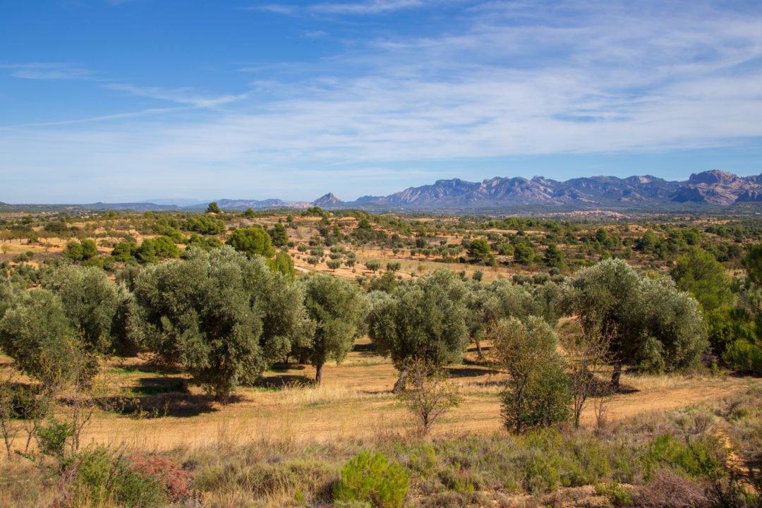 Region Matarrana Valderrobres Spanien