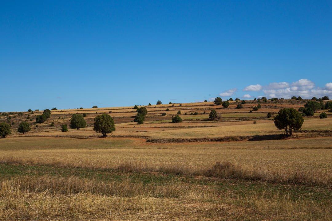 Landschaft Castilla Mancha