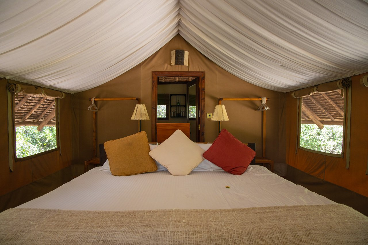 Reisebericht Amboseli Nationalpark - Tortilis Camp