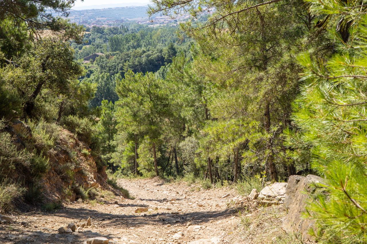 E-Bike Trail Hotel Vella Farga Lladurs