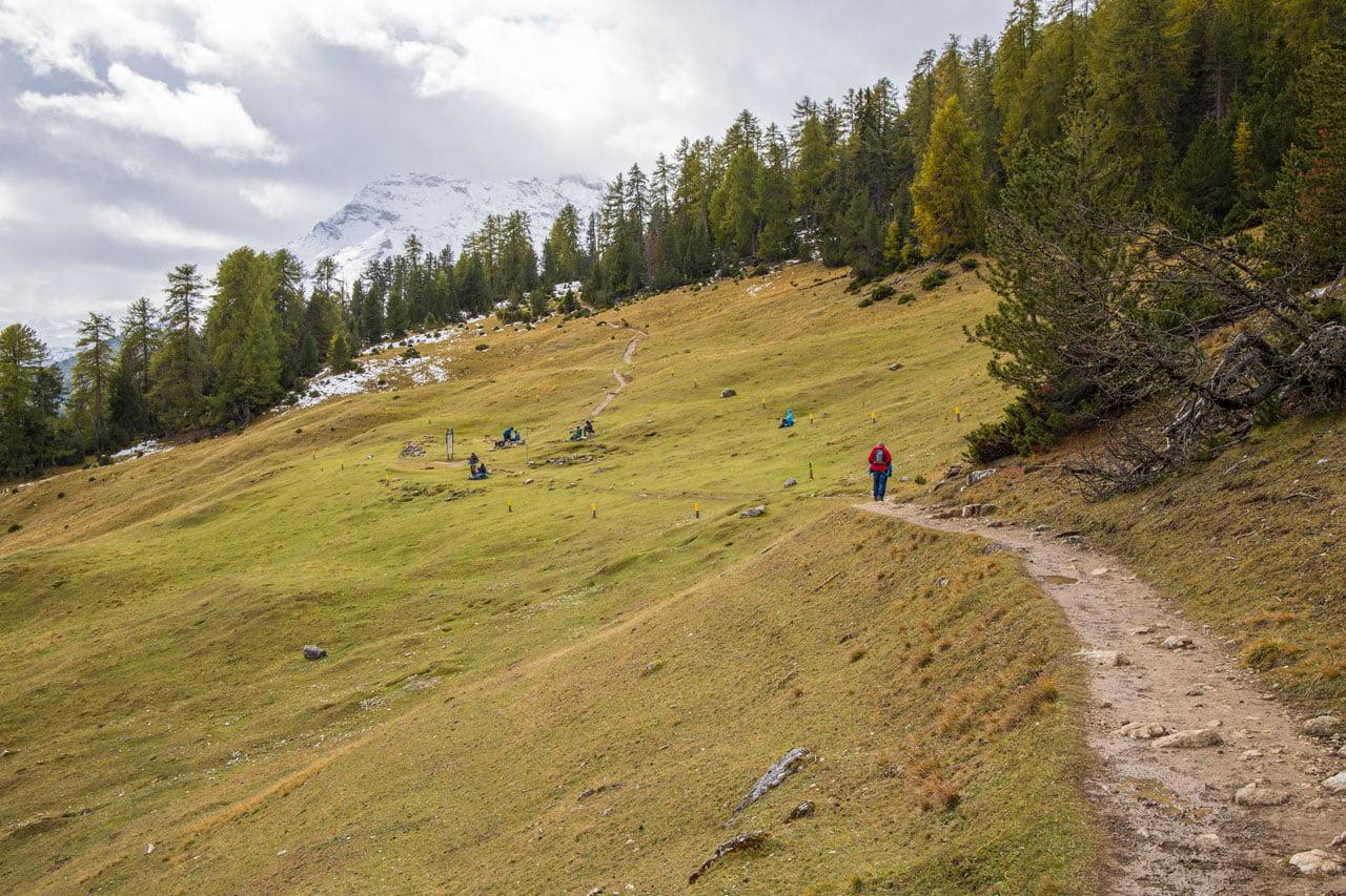 Nationalpark Alp Grimmels